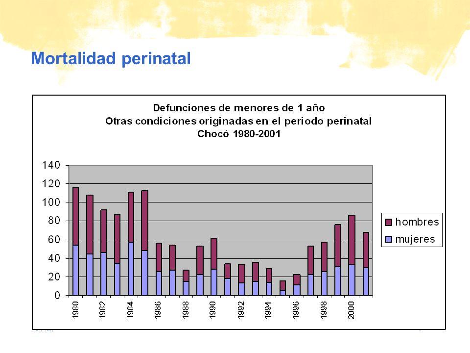 © Plan Mortalidad perinatal