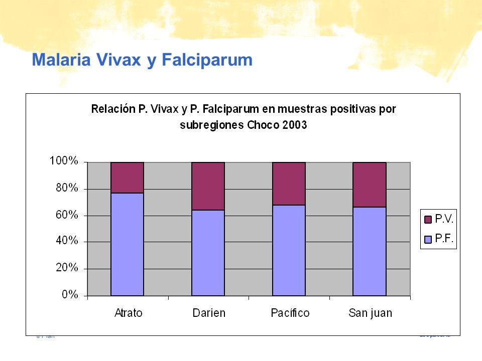 © Plan Malaria Vivax y Falciparum