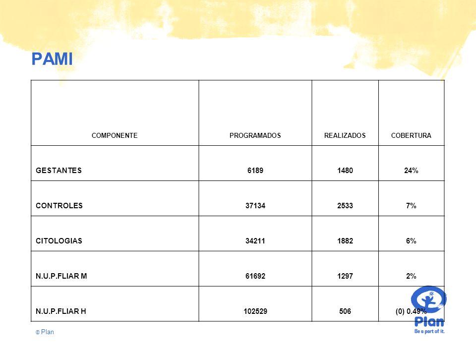 © Plan PAMI COMPONENTEPROGRAMADOSREALIZADOSCOBERTURA GESTANTES6189148024% CONTROLES3713425337% CITOLOGIAS3421118826% N.U.P.FLIAR M6169212972% N.U.P.FLIAR H102529506(0) 0.49%