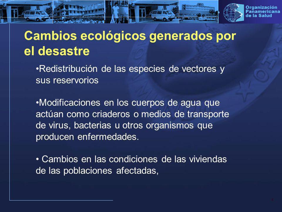 15 Organización Panamericana de la Salud Algunas Enfermedades que se recomienda vigilar EDAs y Cólera IRAs Dermatosis Parasitosis Dengue Paludismo Hepatitis Leptospirosis Conjuntivitis