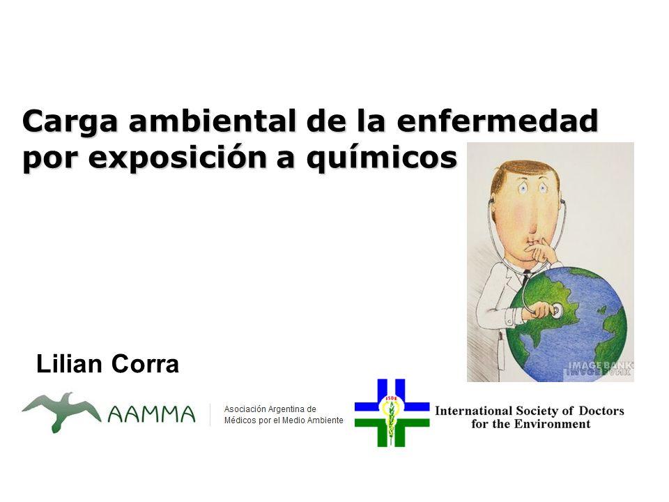 Lilian Corra Carga ambiental de la enfermedad por exposición a químicos