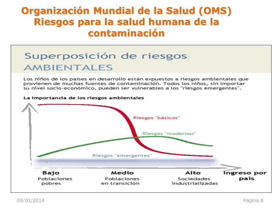 09/01/2014Página 8 Organización Mundial de la Salud (OMS) Riesgos para la salud humana de la contaminación