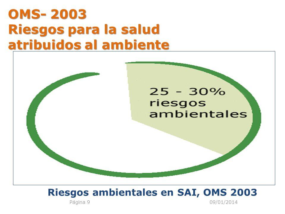 09/01/2014Página 9 OMS- 2003 Riesgos para la salud atribuidos al ambiente Riesgos ambientales en SAI, OMS 2003