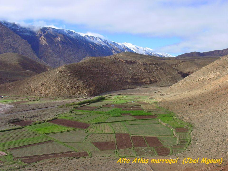 Alto Atlas marroquí (Jbel Mgoun)