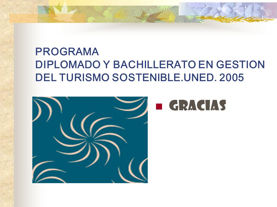 PROGRAMA DIPLOMADO Y BACHILLERATO EN GESTION DEL TURISMO SOSTENIBLE.UNED. 2005 GRACIAS