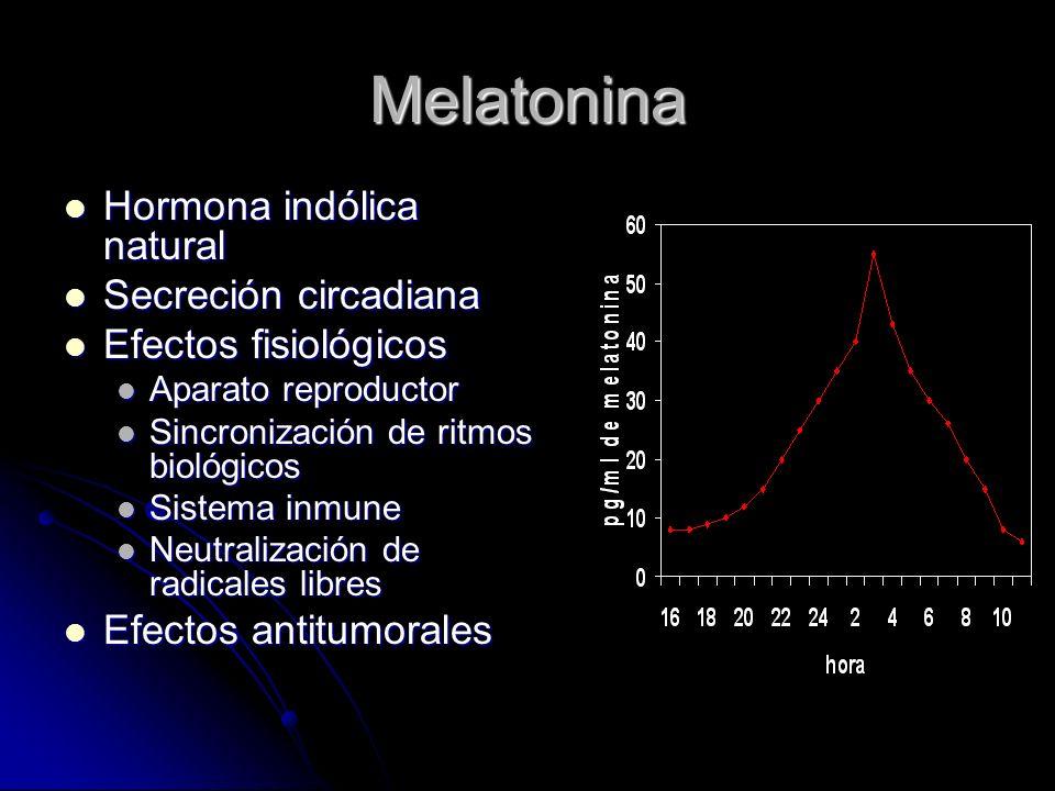 La Melatonina como Molécula Antiestrogénica Inhibe el crecimiento de células MCF-7 (Cos y Sánchez-Barceló, 1993) Inhibe el crecimiento de células MCF-7 (Cos y Sánchez-Barceló, 1993) Bloquea el efecto mitogénico del estradiol (Rato y Cols., 1999) Bloquea el efecto mitogénico del estradiol (Rato y Cols., 1999) Disminuye la unión del RE, estimulada por estradiol, al ERE (Rato y Cols., 1999) Disminuye la unión del RE, estimulada por estradiol, al ERE (Rato y Cols., 1999) Inhibe específicamente al RE, a través de la calmodulina (del Río y Cols., 2004) Inhibe específicamente al RE, a través de la calmodulina (del Río y Cols., 2004)