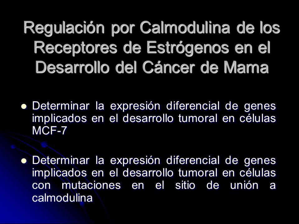 Regulación por Calmodulina de los Receptores de Estrógenos en el Desarrollo del Cáncer de Mama Determinar la expresión diferencial de genes implicados