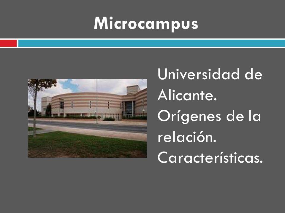 Microcampus Universidad de Alicante. Orígenes de la relación. Características.