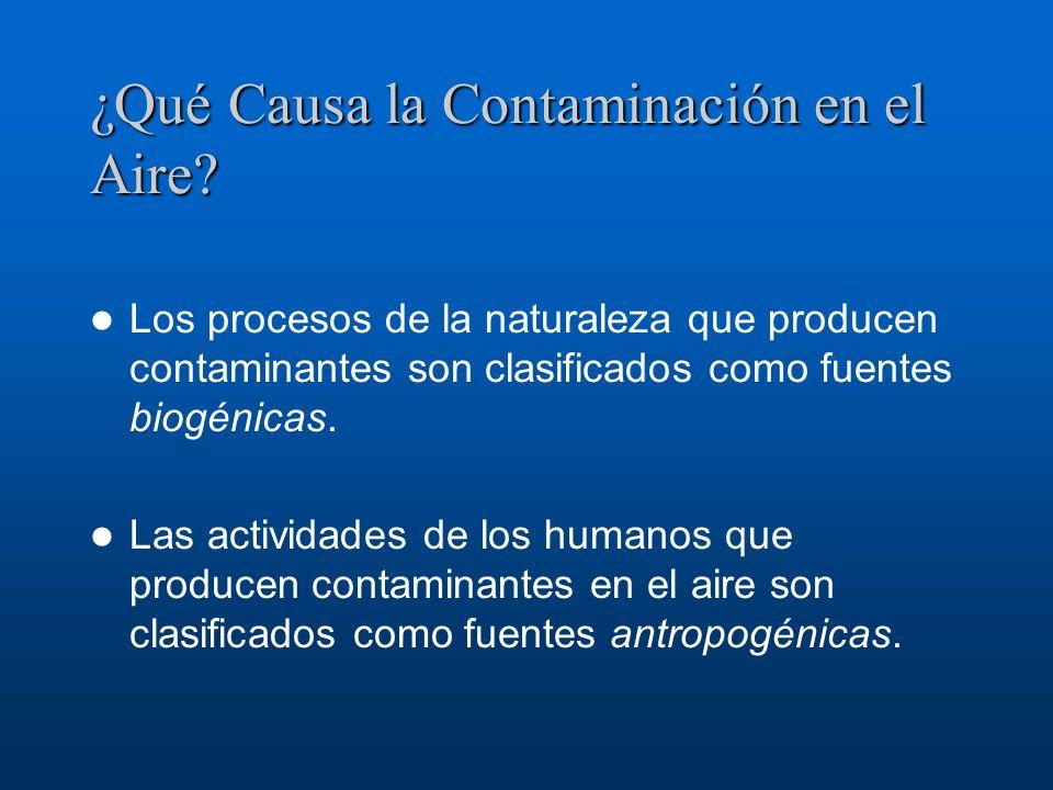 ¿Qué Causa la Contaminación en el Aire? Los procesos de la naturaleza que producen contaminantes son clasificados como fuentes biogénicas. Las activid