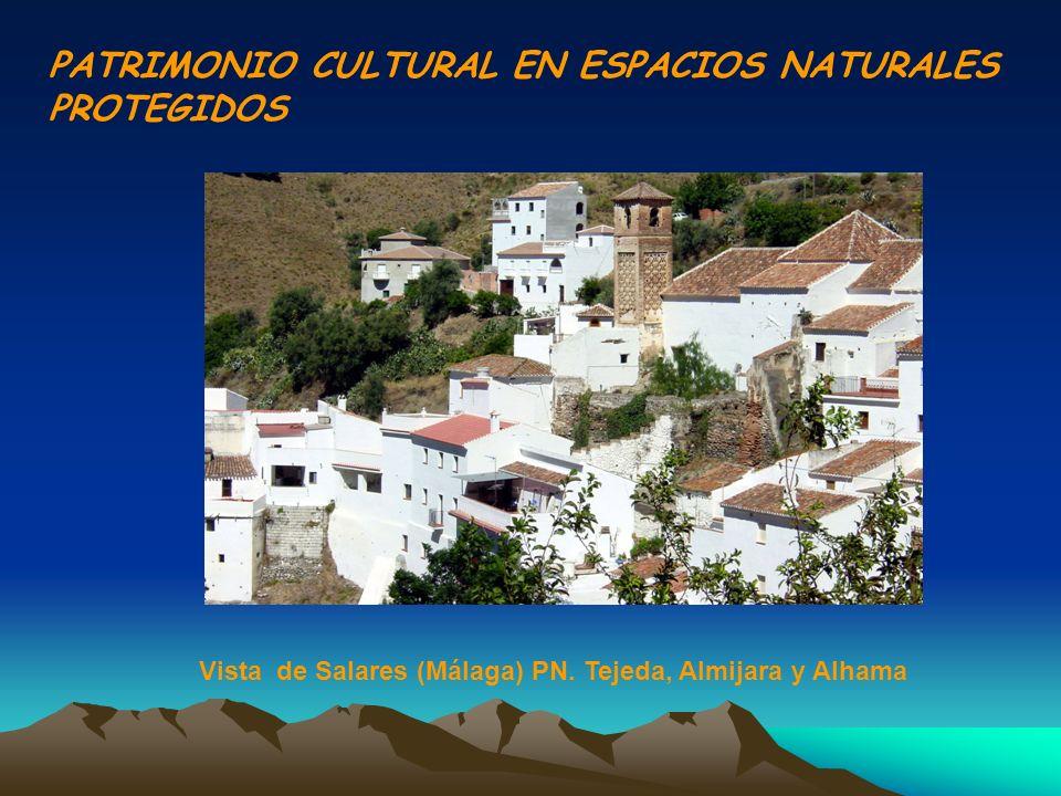 PATRIMONIO CULTURAL EN ESPACIOS NATURALES PROTEGIDOS Vista de Salares (Málaga) PN. Tejeda, Almijara y Alhama