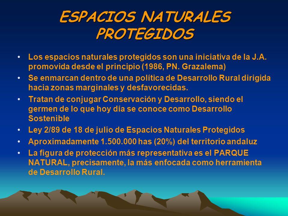 ESPACIOS NATURALES PROTEGIDOS Los espacios naturales protegidos son una iniciativa de la J.A. promovida desde el principio (1986, PN. Grazalema) Se en