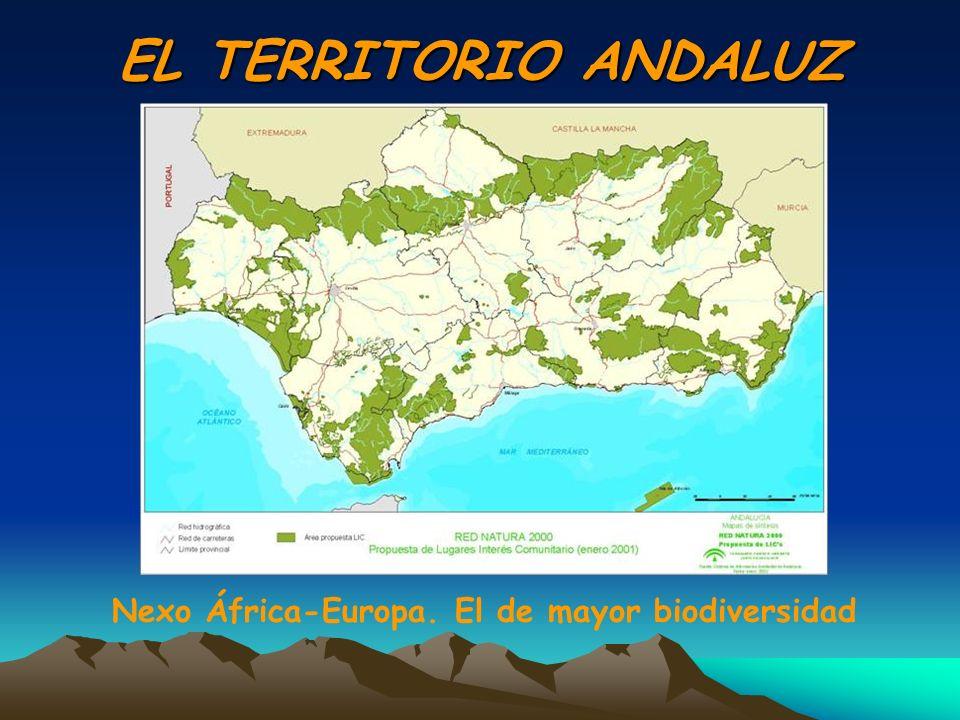 EL TERRITORIO ANDALUZ Nexo África-Europa. El de mayor biodiversidad