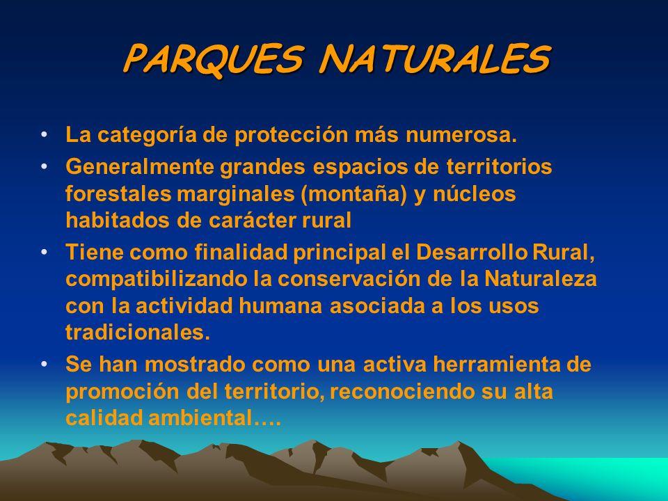 PARQUES NATURALES La categoría de protección más numerosa. Generalmente grandes espacios de territorios forestales marginales (montaña) y núcleos habi