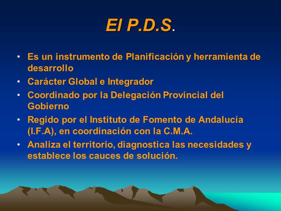 El P.D.S. Es un instrumento de Planificación y herramienta de desarrollo Carácter Global e Integrador Coordinado por la Delegación Provincial del Gobi
