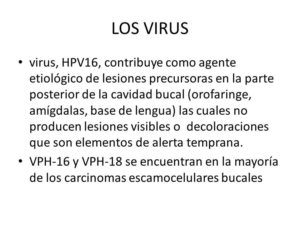 LOS VIRUS virus, HPV16, contribuye como agente etiológico de lesiones precursoras en la parte posterior de la cavidad bucal (orofaringe, amígdalas, ba