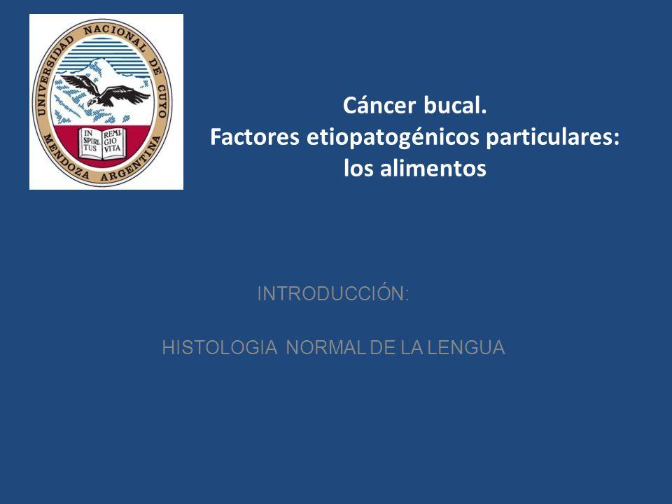 Cáncer bucal. Factores etiopatogénicos particulares: los alimentos INTRODUCCIÓN: HISTOLOGIA NORMAL DE LA LENGUA