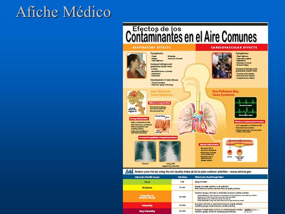 Afiche Médico Efectos de los