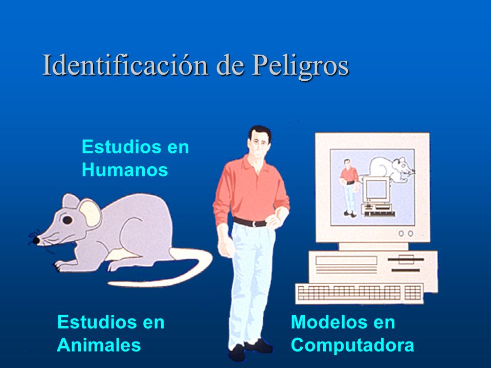 Identificación de Peligros Estudios en Animales Estudios en Humanos Modelos en Computadora