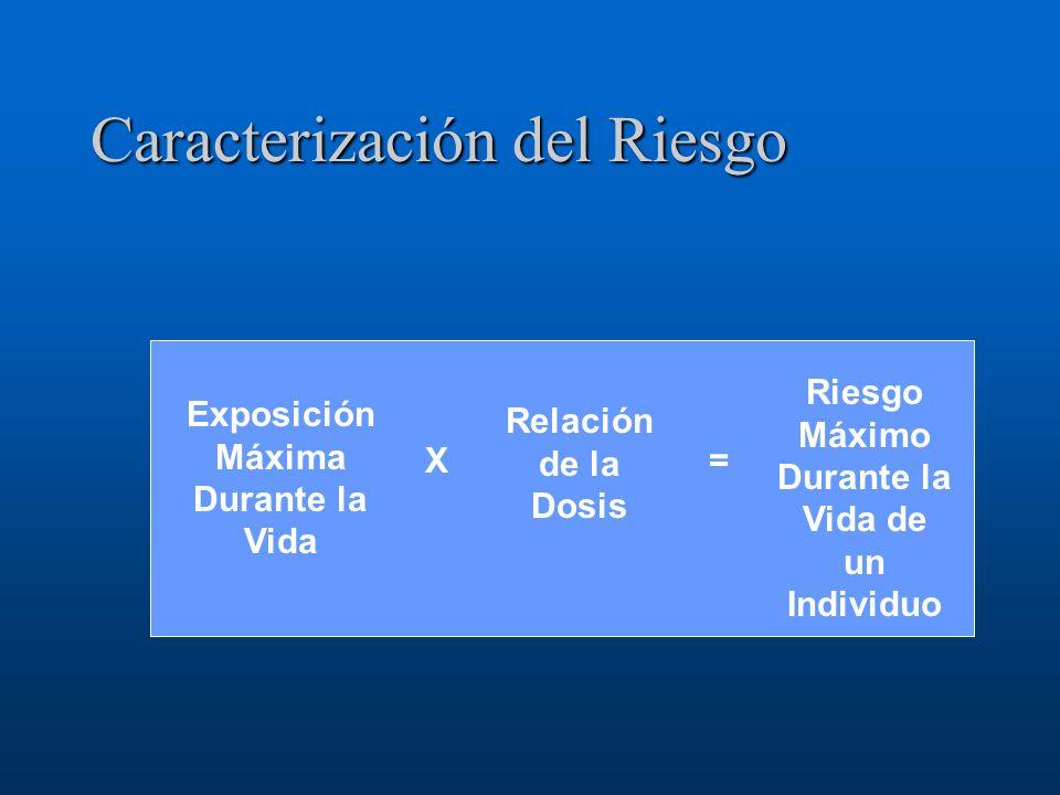 Caracterización del Riesgo Exposición Máxima Durante la Vida Relación de la Dosis Riesgo Máximo Durante la Vida de un Individuo =X