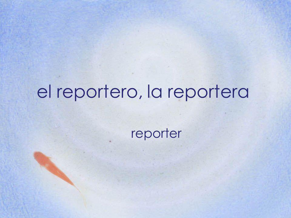 el reportero, la reportera reporter