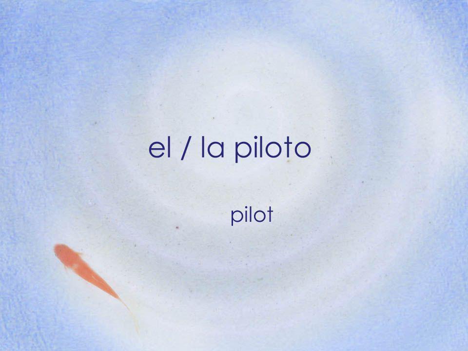 el / la piloto pilot