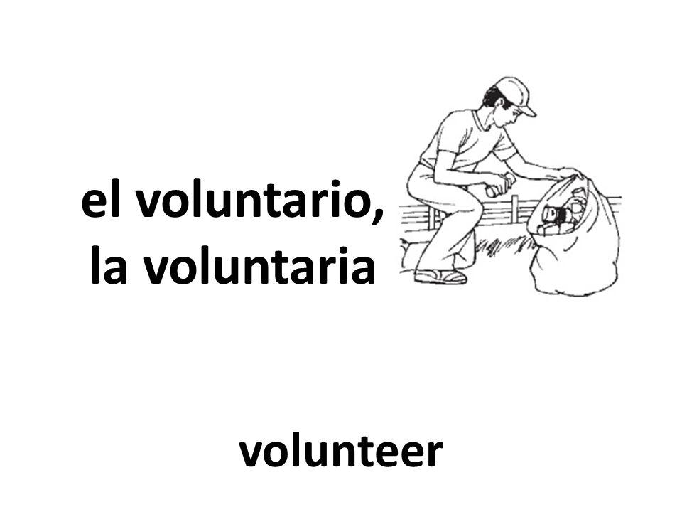 el voluntario, la voluntaria volunteer