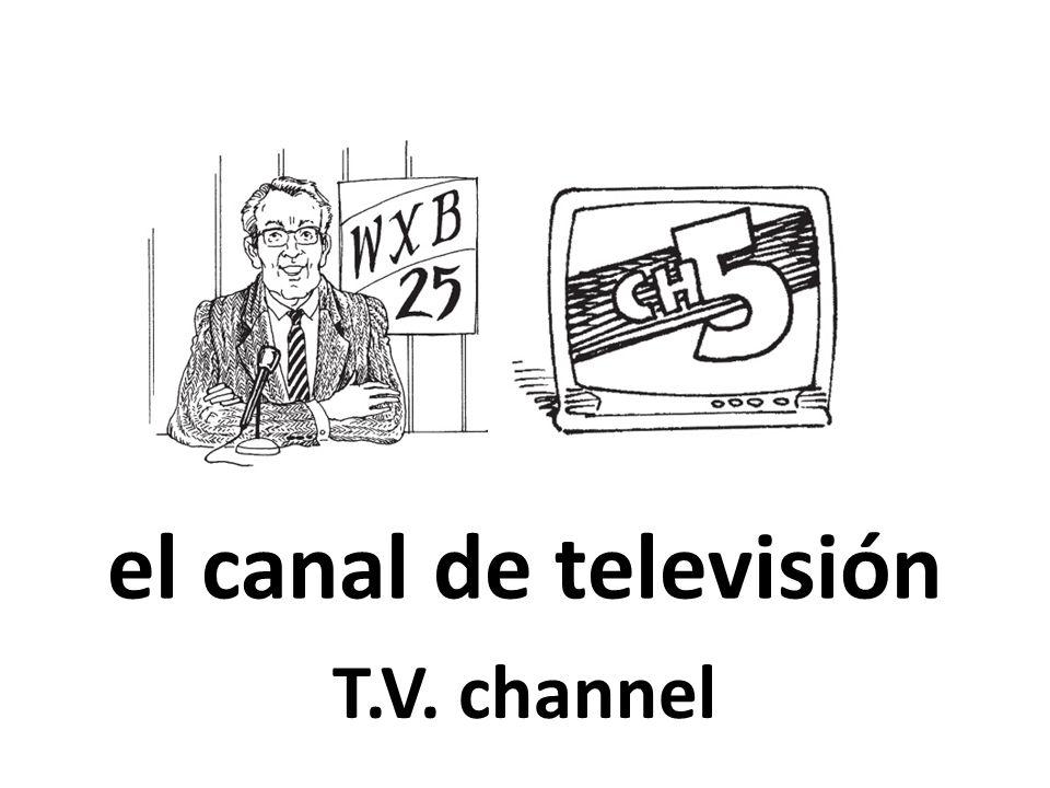 el canal de televisión T.V. channel