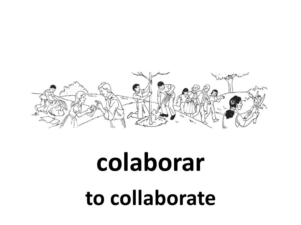 colaborar to collaborate