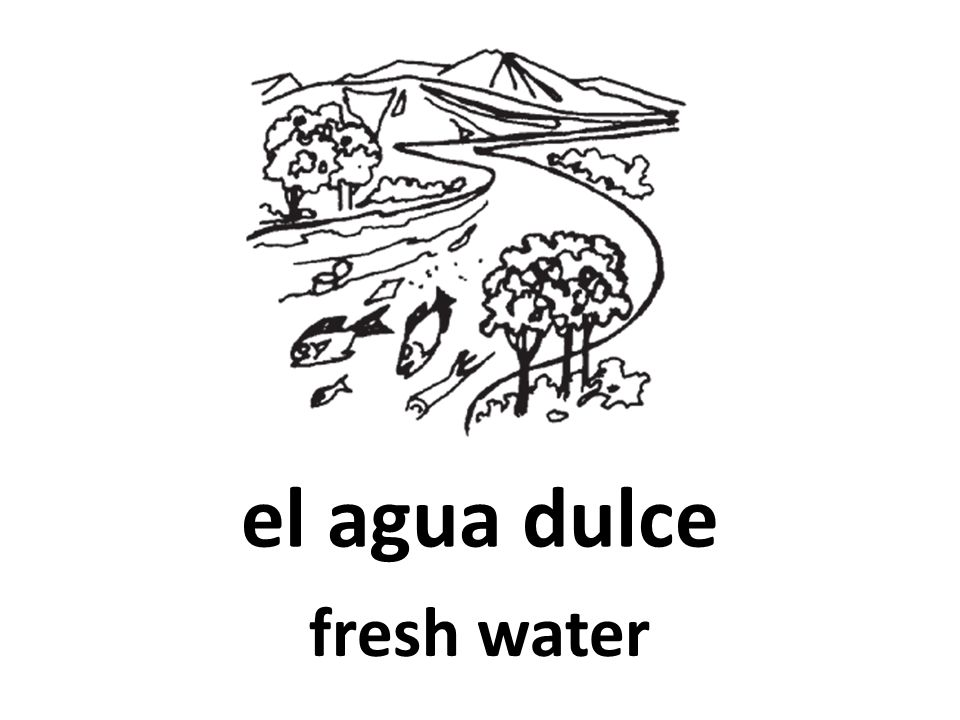 el agua dulce fresh water