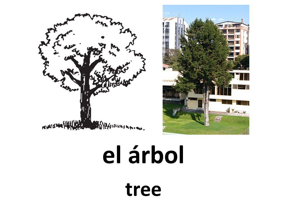 el árbol tree