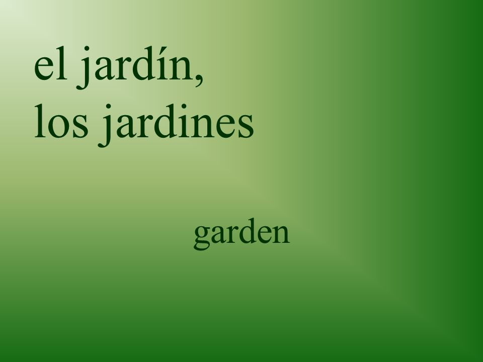 el patio patio