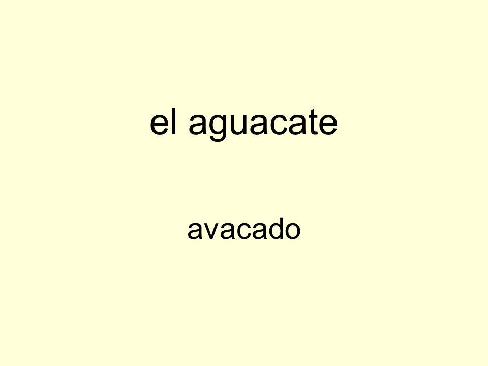 el aguacate avacado