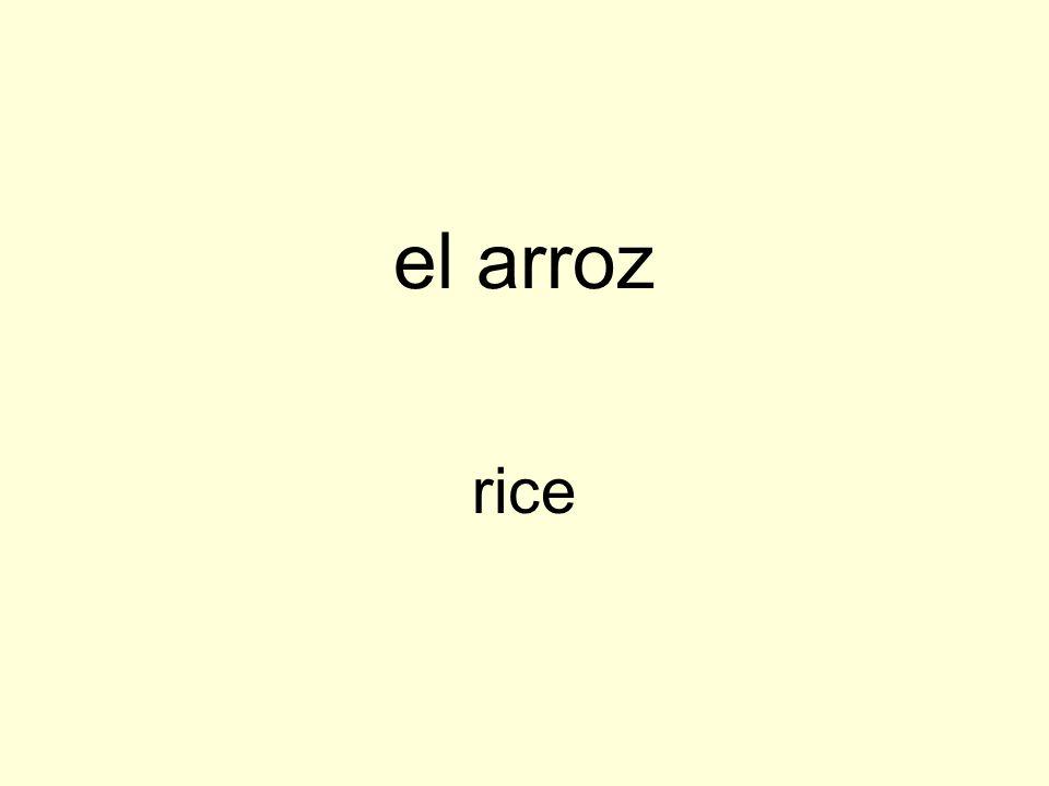 el arroz rice