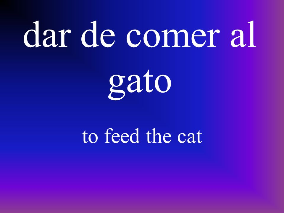 dar de comer al perro to feed the dog