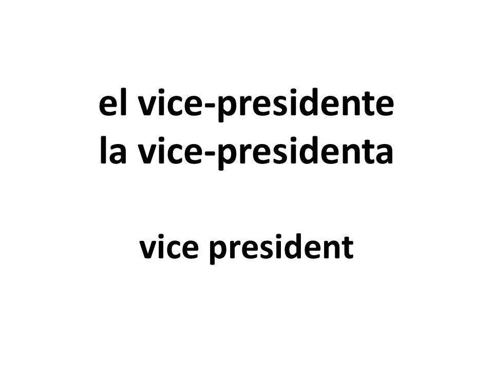 el vice-presidente la vice-presidenta vice president