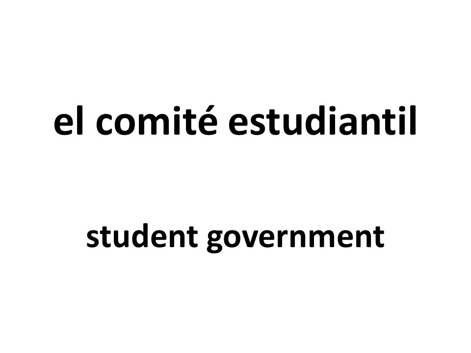el comité estudiantil student government
