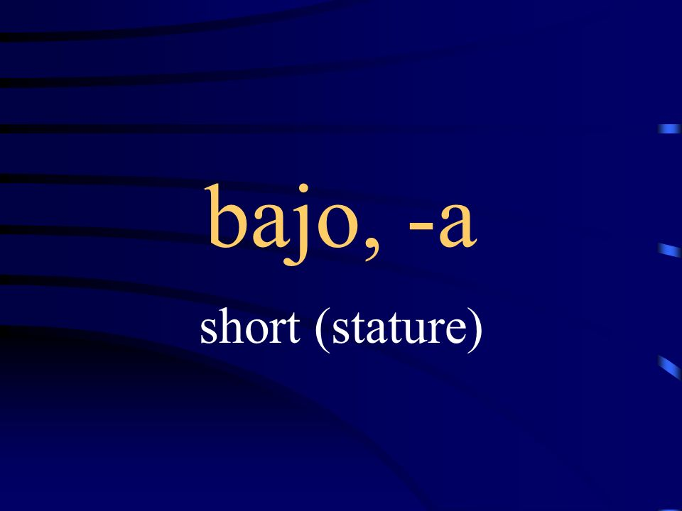 bajo, -a short (stature)