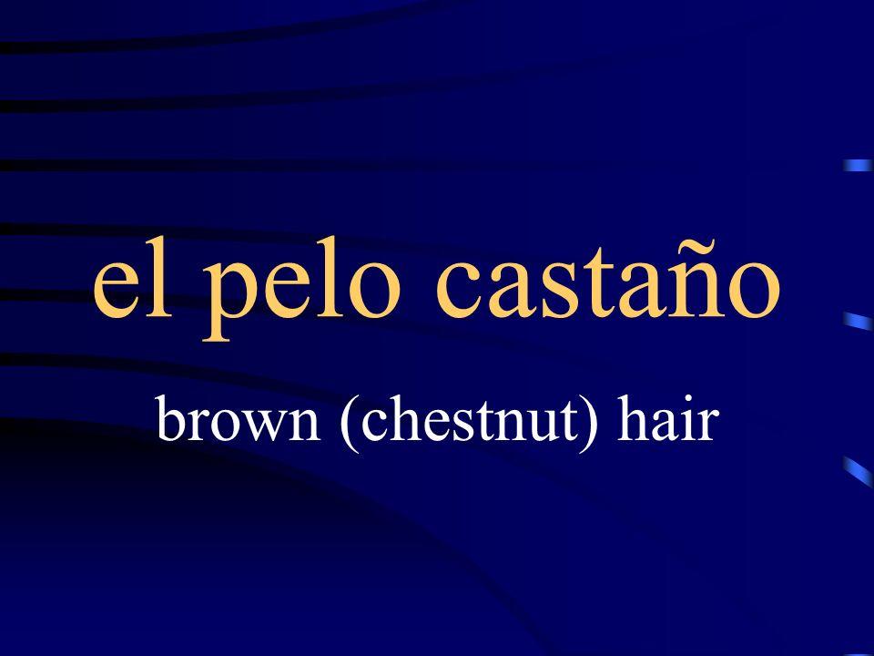 el pelo canoso gray hair