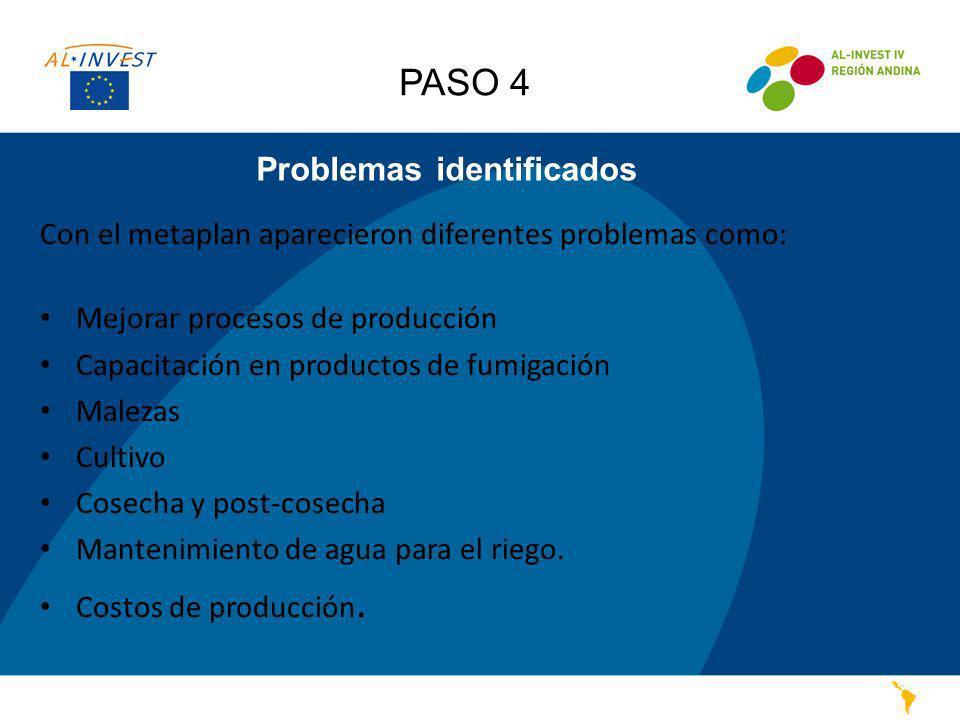 Problemas identificados Con el metaplan aparecieron diferentes problemas como: Mejorar procesos de producción Capacitación en productos de fumigación