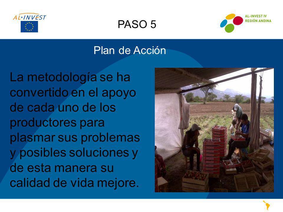 PASO 5 Plan de Acción La metodología se ha convertido en el apoyo de cada uno de los productores para plasmar sus problemas y posibles soluciones y de