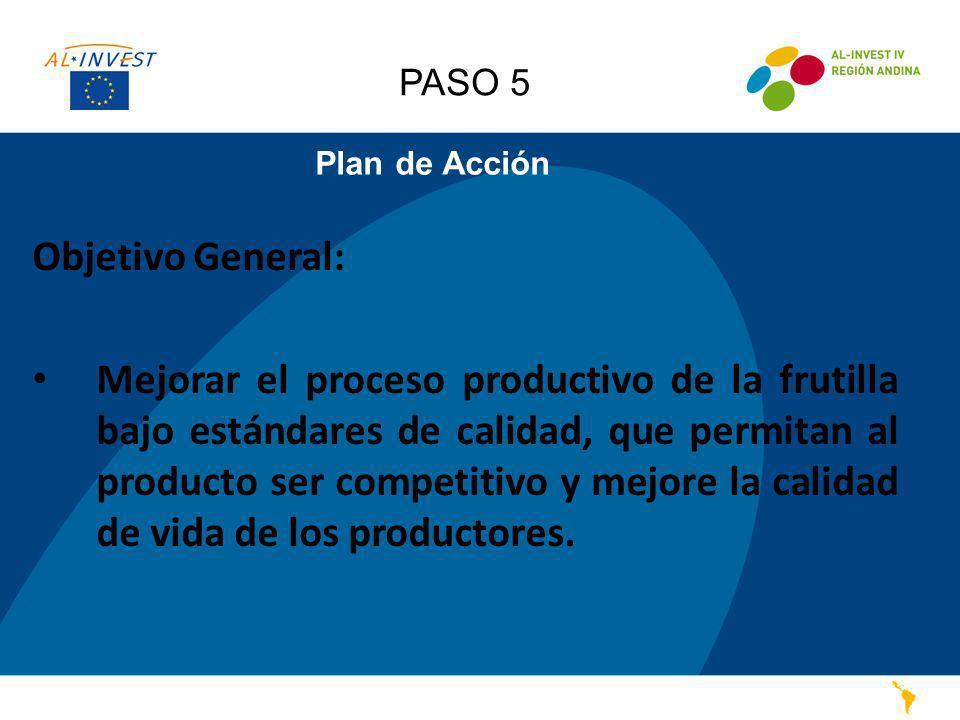 Plan de Acción Objetivo General: Mejorar el proceso productivo de la frutilla bajo estándares de calidad, que permitan al producto ser competitivo y m