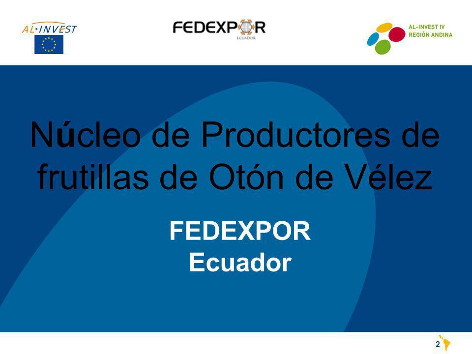 FEDEXPOR Ecuador 2 Núcleo de Productores de frutillas de Otón de Vélez