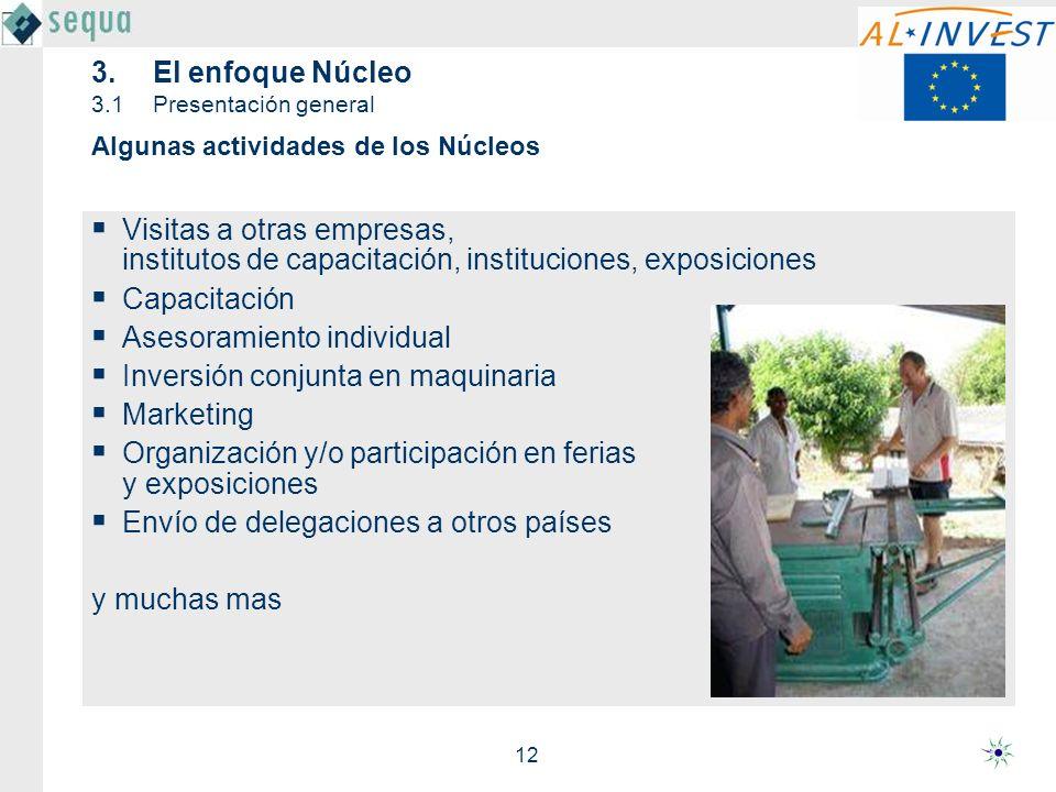 12 3.El enfoque Núcleo 3.1Presentación general Visitas a otras empresas, institutos de capacitación, instituciones, exposiciones Capacitación Asesoram