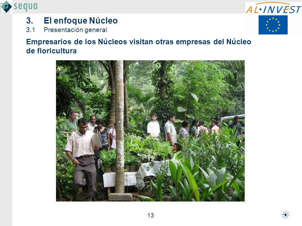 13 Empresarios de los Núcleos visitan otras empresas del Núcleo de floricultura 3.El enfoque Núcleo 3.1Presentación general