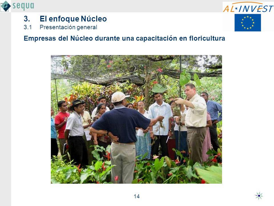 14 Empresas del Núcleo durante una capacitación en floricultura 3.El enfoque Núcleo 3.1Presentación general