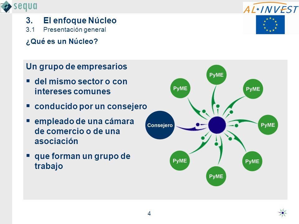 4 3.El enfoque Núcleo 3.1Presentación general Un grupo de empresarios del mismo sector o con intereses comunes conducido por un consejero empleado de