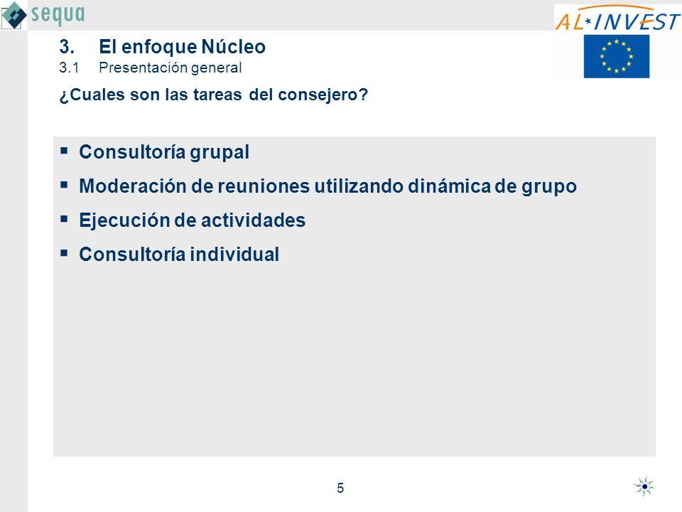 5 3.El enfoque Núcleo 3.1Presentación general Consultoría grupal Moderación de reuniones utilizando dinámica de grupo Ejecución de actividades Consult