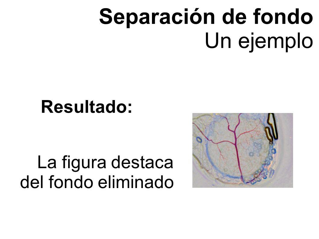 Separación de fondo Un ejemplo La figura destaca del fondo eliminado Resultado: