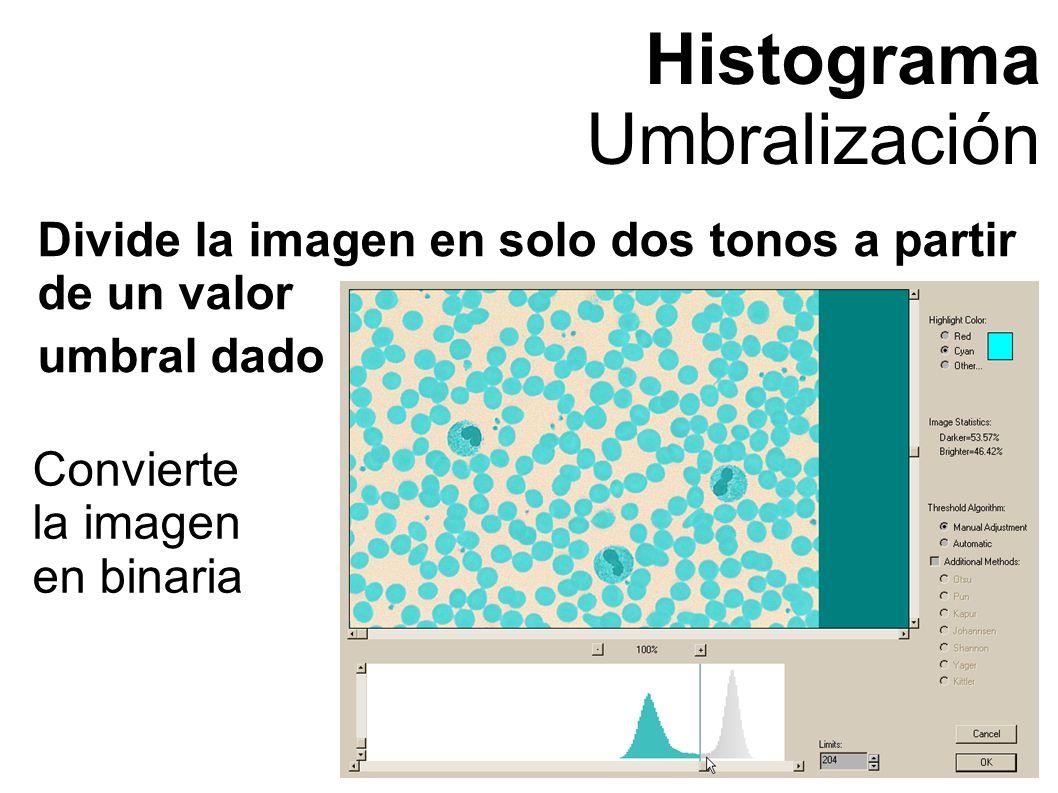 Histograma Umbralización Divide la imagen en solo dos tonos a partir de un valor umbral dado Convierte la imagen en binaria
