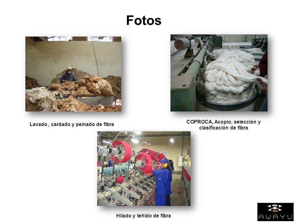 Fotos COPROCA, Acopio, selección y clasificación de fibra Lavado, cardado y peinado de fibra Hilado y teñido de fibra